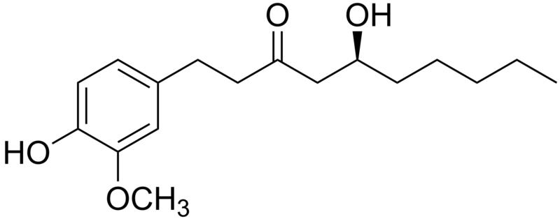Isômero do gingerol, ilustração em: wimimediascommons.