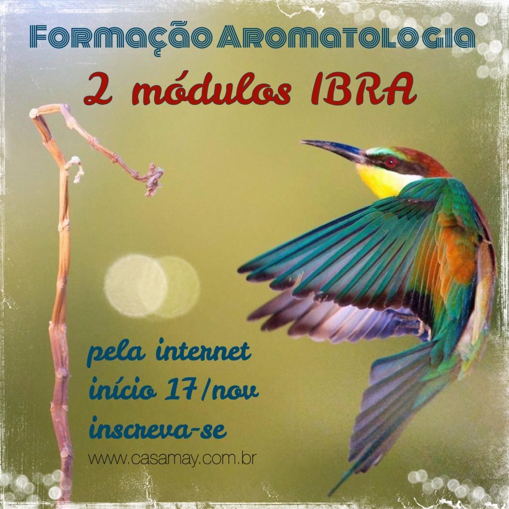Formacao IBRA online Nov14
