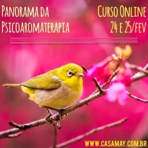 Panorama Online Fev15