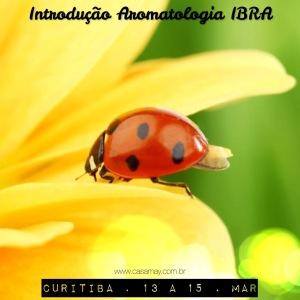 Intro_Ctba_Mar15_2_baixa
