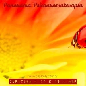Panorama_Ctba_Mar15_baixa