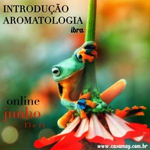 Intro IBRA Jun15