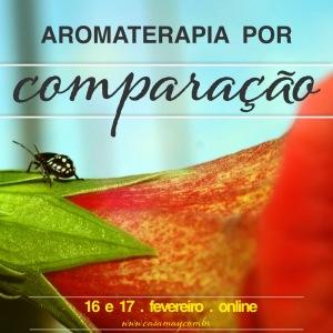 Aromaterapia Comparação online Fev16