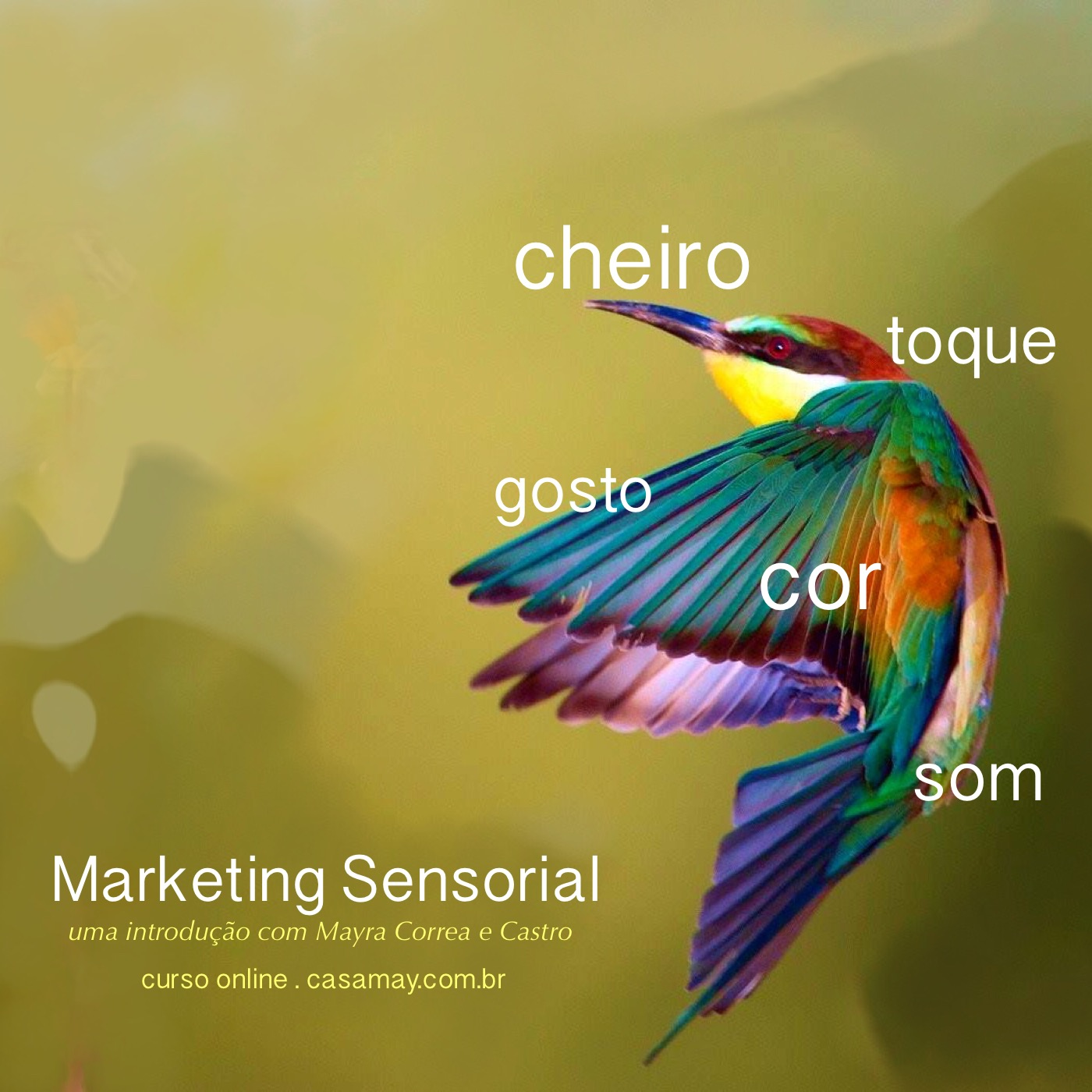 marketing sensorial sem data