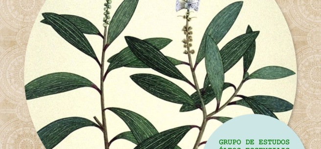 GRE tea tree sem data
