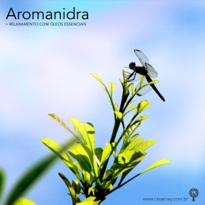 aromanidra 2017