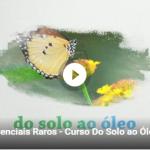 doSoloaoOleo_videopromo